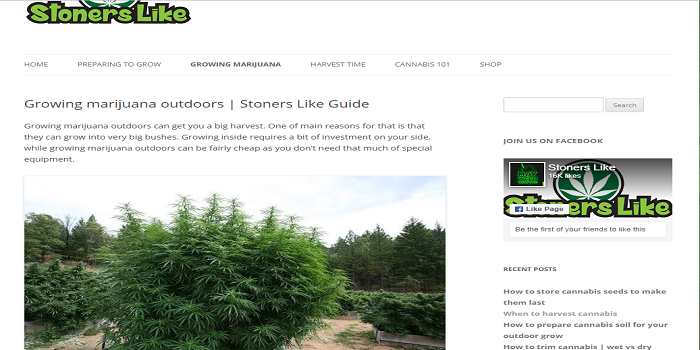growing marijuana outdoors | Stoners Like Guide